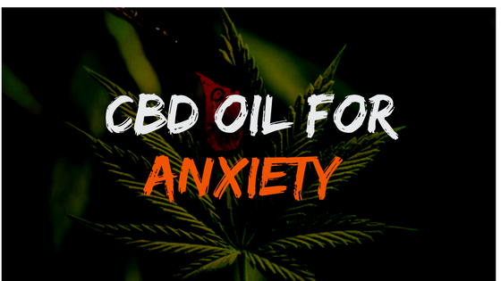 Best CBD OIL FOR ANXIETY Reviews