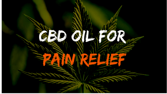 Best cbd oils Which can be used to treat pain