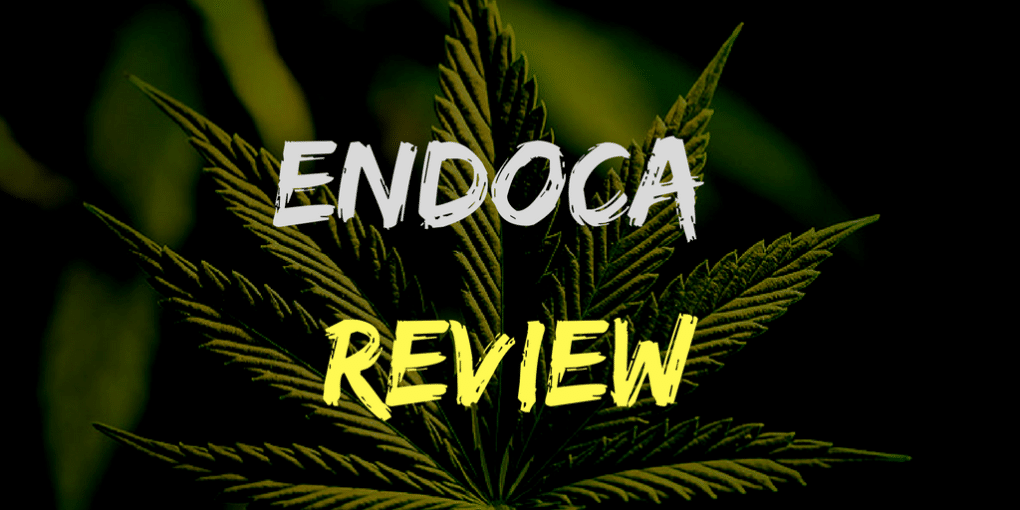 Endoca Review: Best Cbd oil in Uk