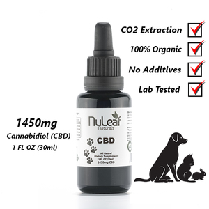 Nulead naturals for pets review
